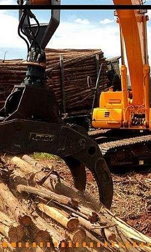 Garra para madeira